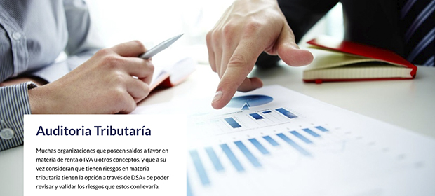 Dsa Auditoria y Revisoria Fiscal