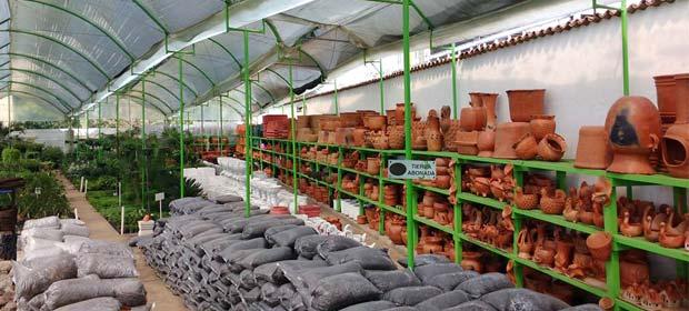 Equipos para jardineria en latinoamerica p ginas amarillas for Viveros de plantas en lima