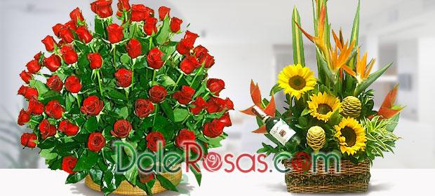 Floristería Dalerosas.Com