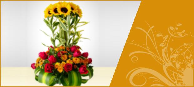Floristeria Paraiso de las Flores