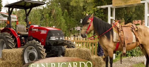 San Ricardo Farm And Lodge