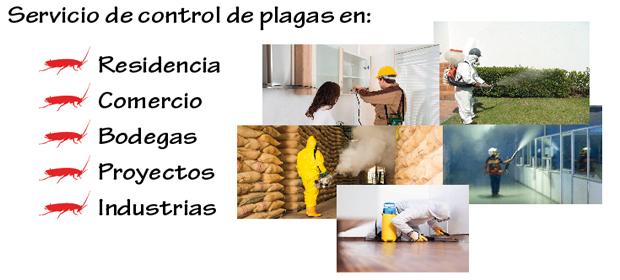 Keyciti Pest Control