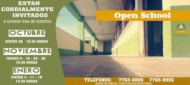 Colegio Pino Montano