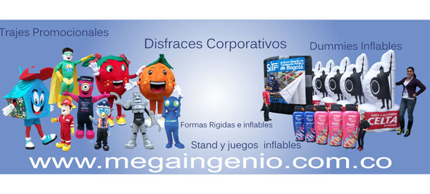 Mega Ingenio Ltda.