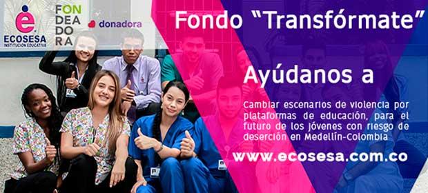 Ecosesa - Imagen 5 - Visitanos!