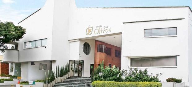 Los Olivos - Imagen 1 - Visitanos!