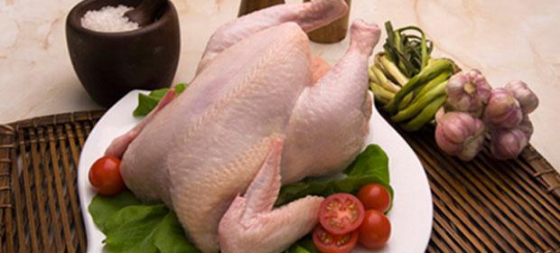 Pollos Savicol S.A.