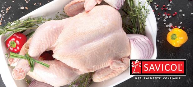 Pollos Savicol - Imagen 5 - Visitanos!