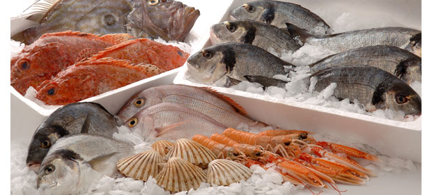 Pescamar - Imagen 5 - Visitanos!