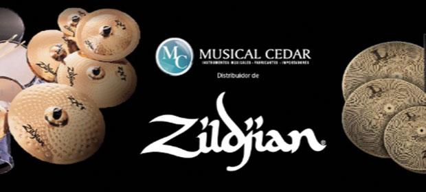 Almacén Musical Cedar - Imagen 2 - Visitanos!