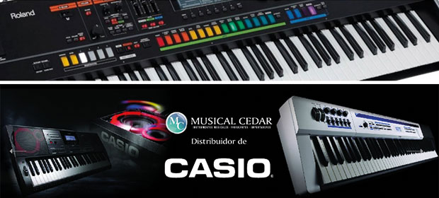 Almacén Musical Cedar - Imagen 3 - Visitanos!