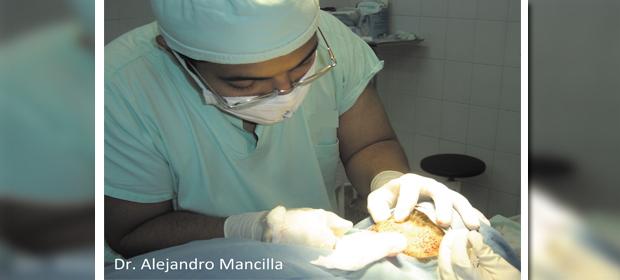 Dr. Gener Alejandro Mancilla Díaz - Imagen 1 - Visitanos!