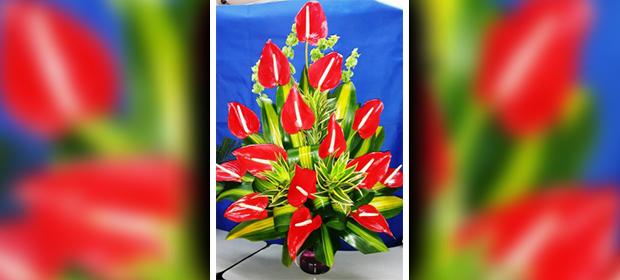 D'Flores