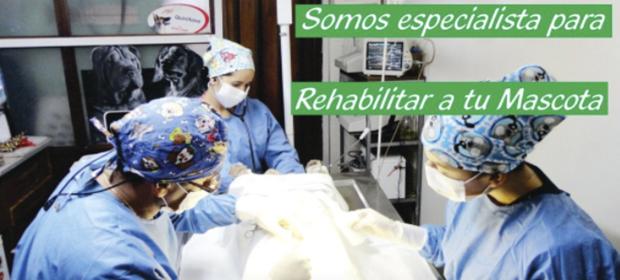 Clínica Veterinaria Patotas - Imagen 1 - Visitanos!