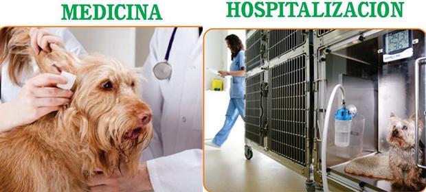 Clínica Veterinaria Patotas - Imagen 2 - Visitanos!