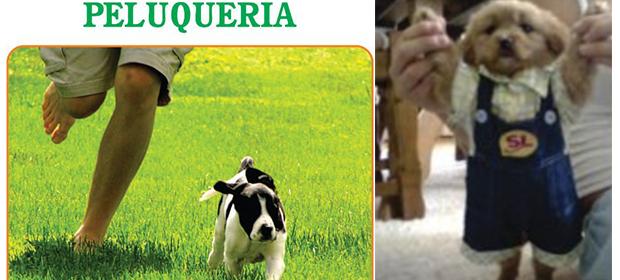 Clínica Veterinaria Patotas - Imagen 4 - Visitanos!