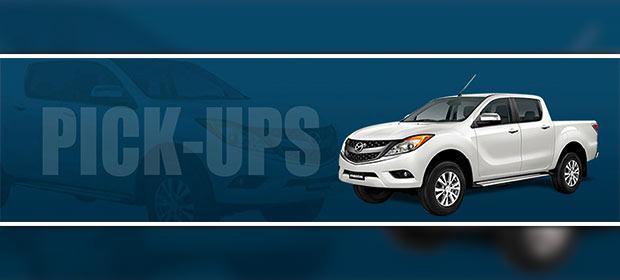 Chapins Rental Car - Imagen 2 - Visitanos!