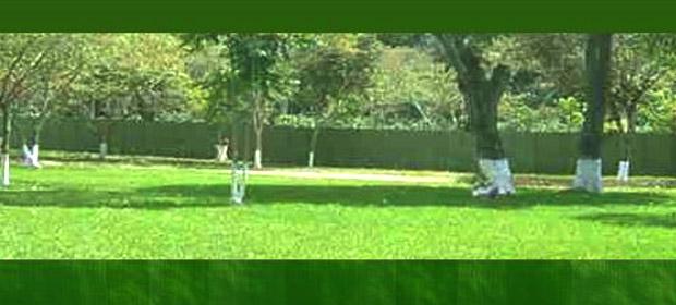 Camposanto Jardines De La Asuncion