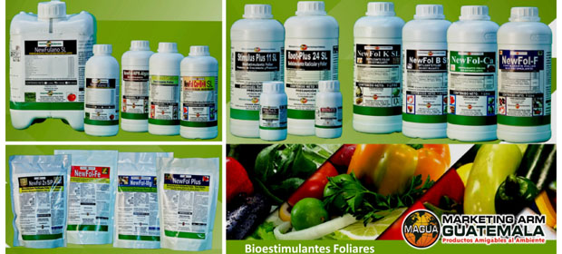 Marketing Arm Guatemala, S.A.