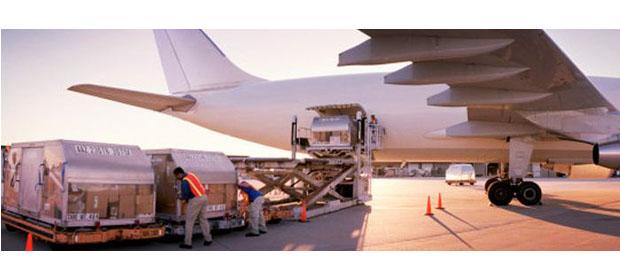 Rique Logistics