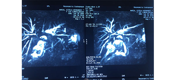 Dr. David Estuardo Porras A. - Imagen 4 - Visitanos!