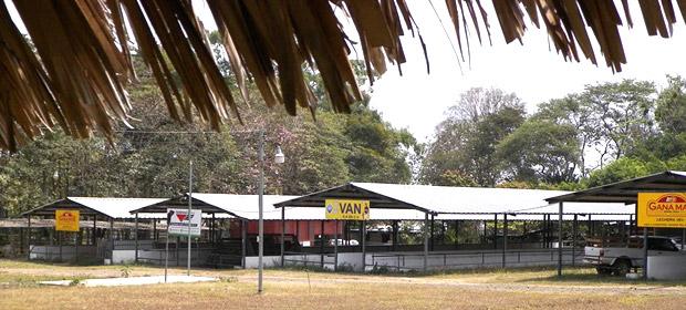 Asociación Feria Ganadera De Santa Ana