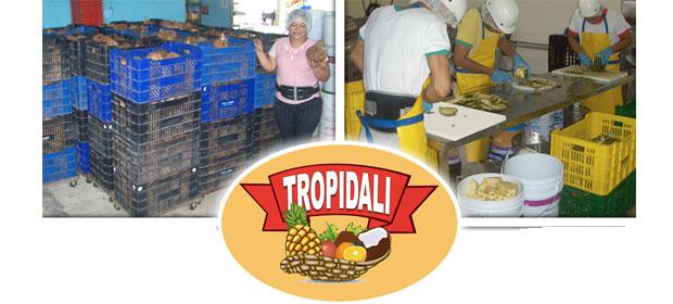 Tropical De Alimentos, S.A. - Imagen 3 - Visitanos!