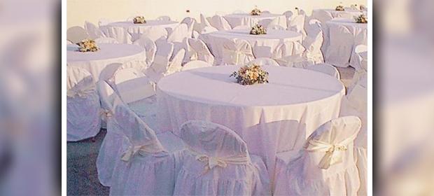 Alquileres Eventodos Flor Blanca - Imagen 1 - Visitanos!