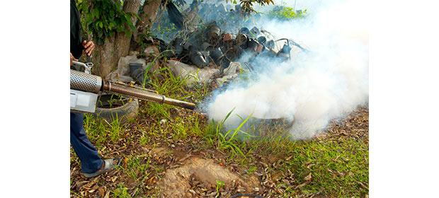 Fuminsectos Del Llano