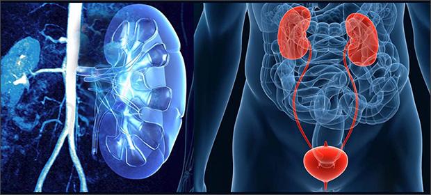 Clinica De Urologia Dr. Giovanni Gaytan