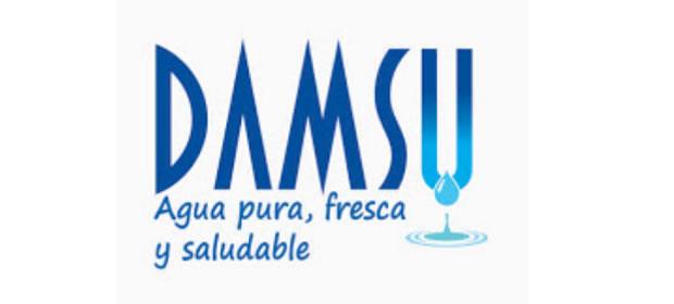 Damsu S.A.S.