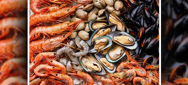 Comercializadora Mar Y Campo - Imagen 4 - Visitanos!