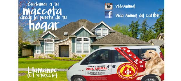 Clinica Veterinaria Vida Animaldel Caribe