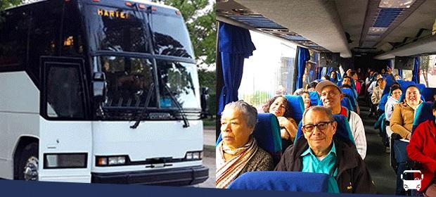 Buses Para Todos - Imagen 1 - Visitanos!