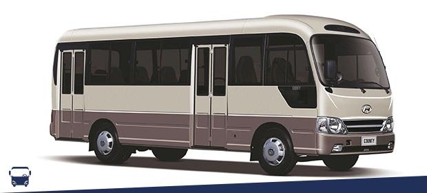 Buses Para Todos - Imagen 4 - Visitanos!
