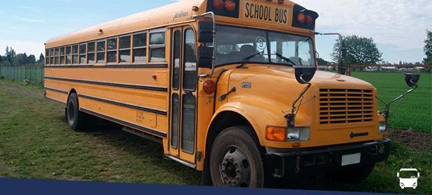 Buses Para Todos - Imagen 5 - Visitanos!