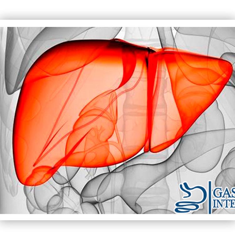 Gastroendoscopica Integral / Dr. Fabricio Alvarado