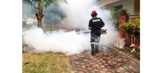 Fumigaciones Caribe