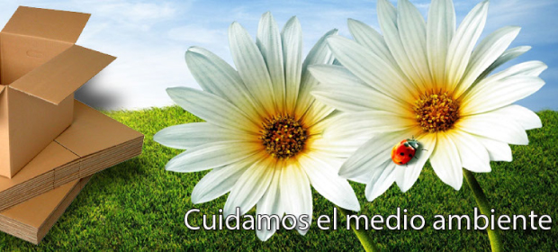 Corrugados De Risaralda - Imagen 3 - Visitanos!