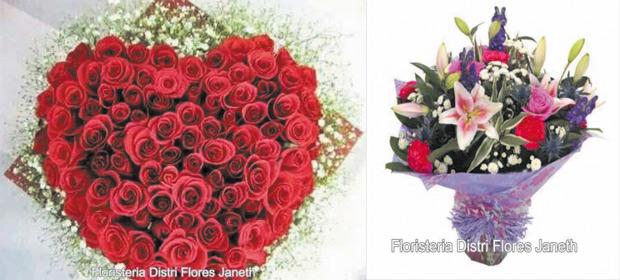 Distri Flores Janeth