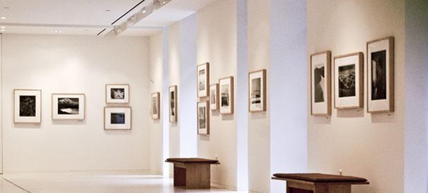 Galeria El Pergamino