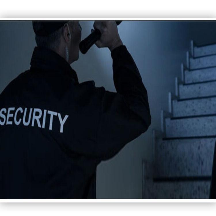 Servicios Panameños De Seguridad, S.A - Imagen 5 - Visitanos!