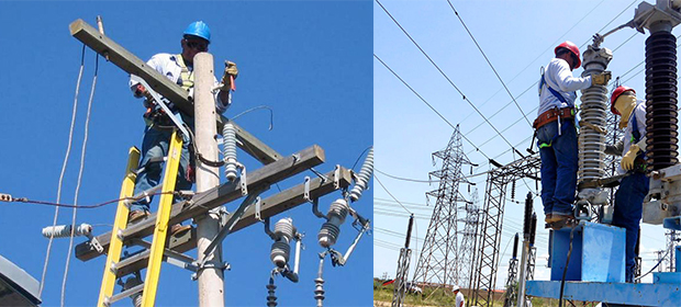 Diesel Electric Del Risaralda S.A.S.