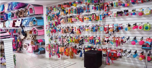 Mascotas Y Mascotas Gold S.A.S - Imagen 3 - Visitanos!