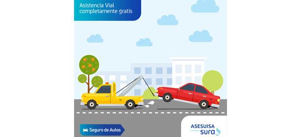 ASESUISA - Imagen 4 - Visitanos!