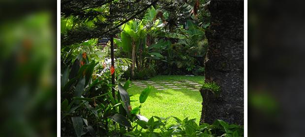 Jardines Tivoli - Imagen 1 - Visitanos!