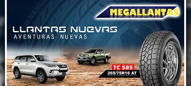 Megallantas - Imagen 2 - Visitanos!