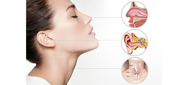 Dra. Leticia Tobar-Otorrinolaringología - Imagen 4 - Visitanos!