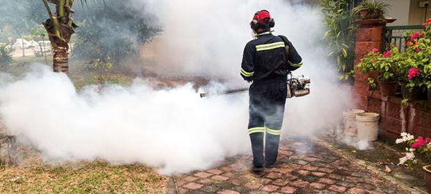 Fumigaciones Y Extintores Control Natura