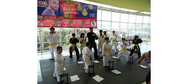 Md´S Kenpo Karate
